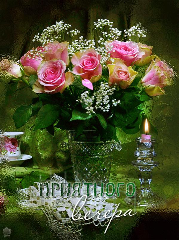 добрый вечер картинки букет роз сайдинг сегодня